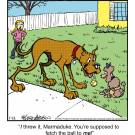 'I threw it, Marmaduke. You're supposed to fetch the ball to me!'